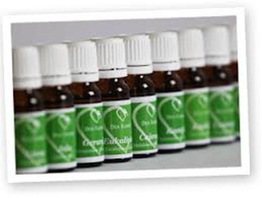 Eterično ulje anisa, 10ml, Dea Flores