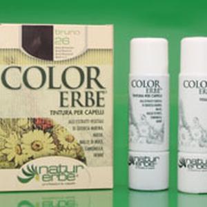 Color erbe boja za kosu br 26