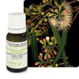 Eterično ulje eukaliptus radiata 10 ml, Pranarom